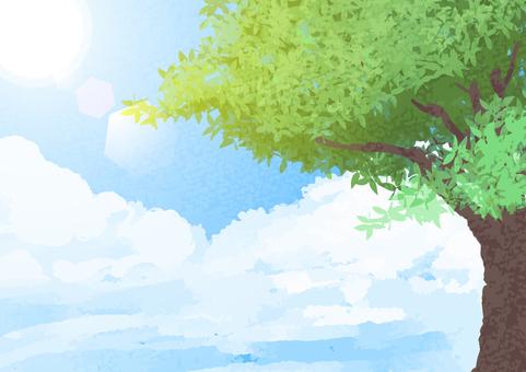 Watercolor Blue Sky Tree Light