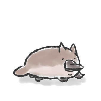 오리너구리