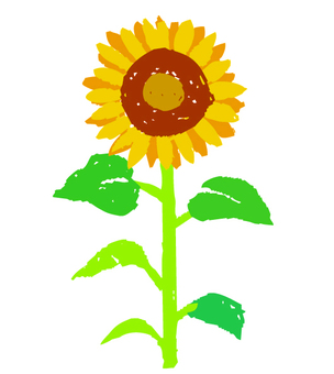 Hand-drawn wind sunflower