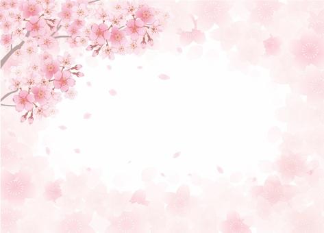 Cherry Cherry Blossoms Frame (Spring)