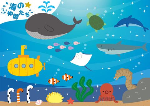 Sea Creatures Material Set