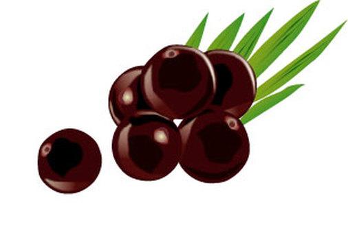Acai fruit