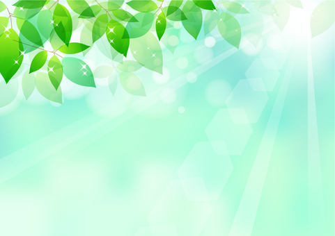 Fresh green material 186