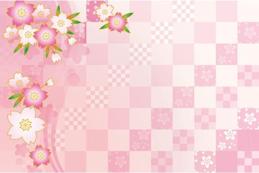 Sakura Sakura 17-01