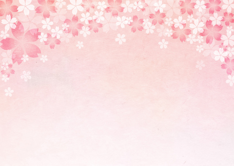 Sakura_ Washi_ background