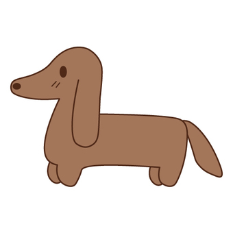 Image of a dog (Dachshund)