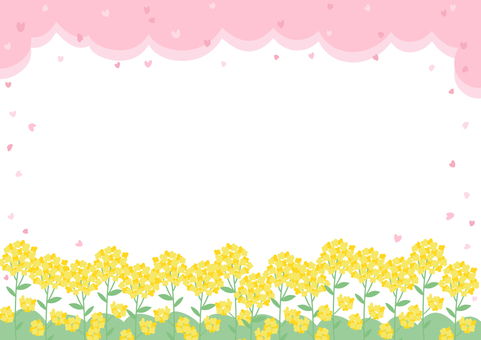 Rape flowers and cherry blossoms
