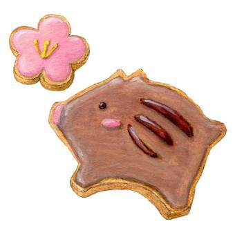 New Year's Icing Cookie 6-5