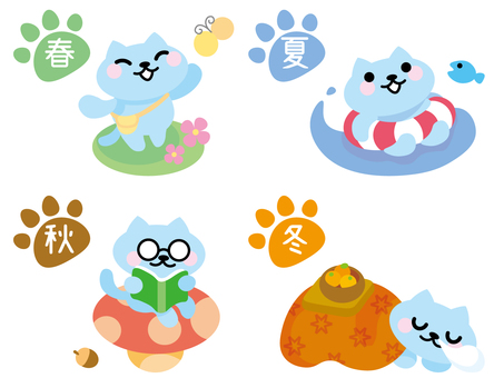 Spring, summer, autumn and winter seasons cat