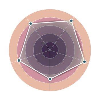 Radar Chart 3