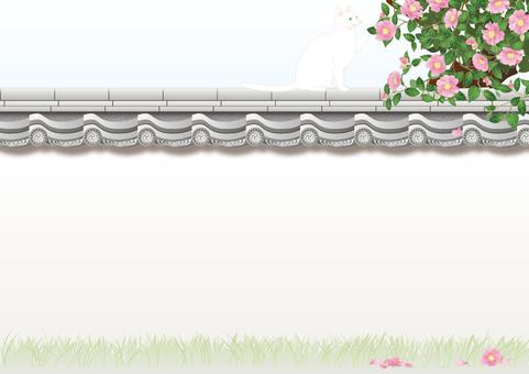 Tile wall _ mountain tea flower _ white cat