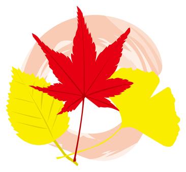 秋天,秋天的落葉