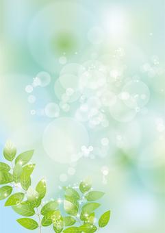 Glittering leaves & sky 62