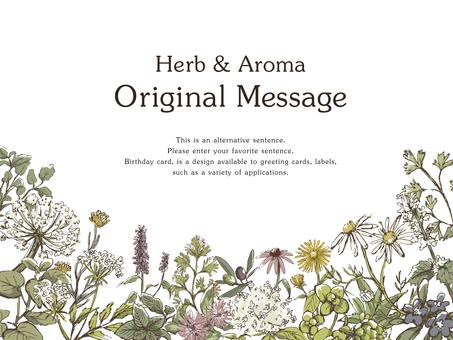 Handwritten Herb Frame 4
