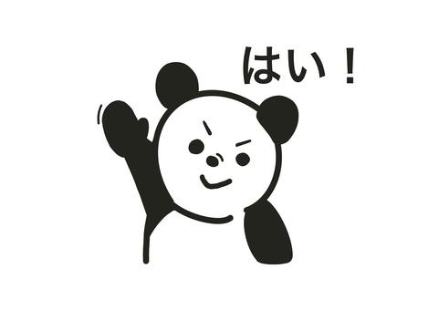 Panda 24