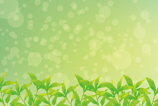 Fresh green green background