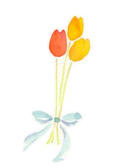 Tulip bouquet 01