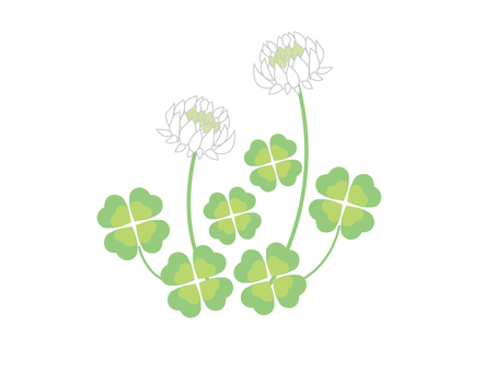 Clover and white clover