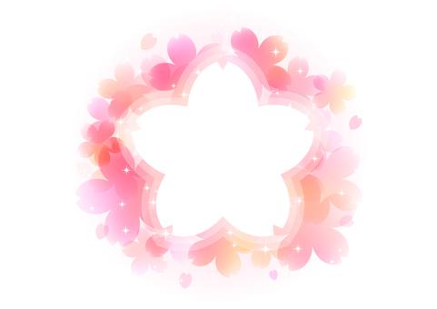 Cherry blossoms 234