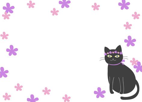 Black cat's wreath