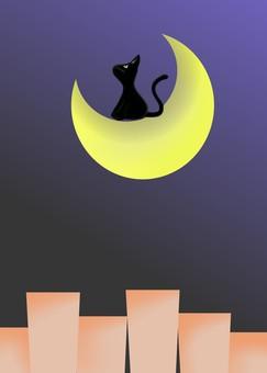Moonlit night and cat