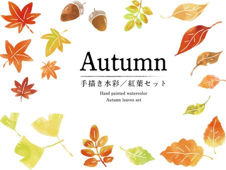 2019秋 手描き水彩/紅葉セット