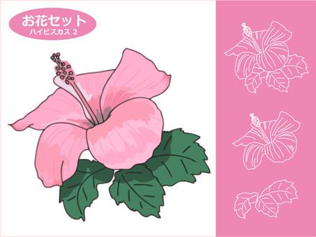 お花の素材 ハイビスカス2