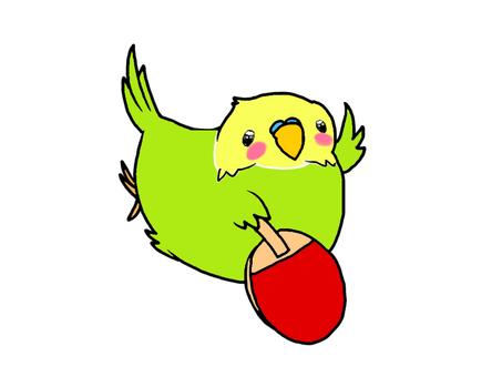 Parakeet_table tennis