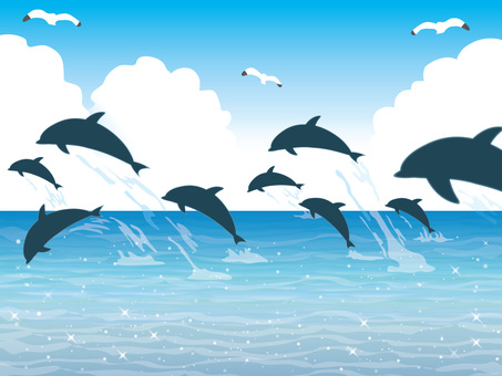 A group of dolphins (12) Waves Quiet daytime lateral movement
