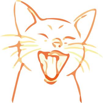 미소 고양이