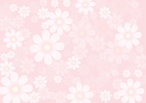 Flower pattern Cosmos 23
