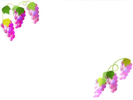 Grape frame 3
