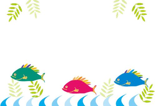 熱帶熱帶熱帶海洋魚類框架