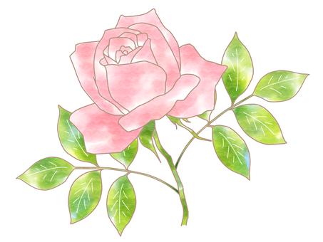 Pink rose single wheel