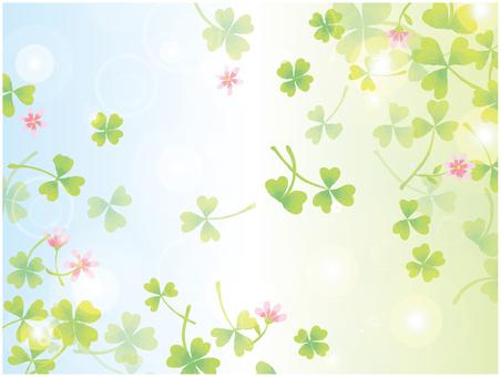 클로버 & 작은 꽃 3