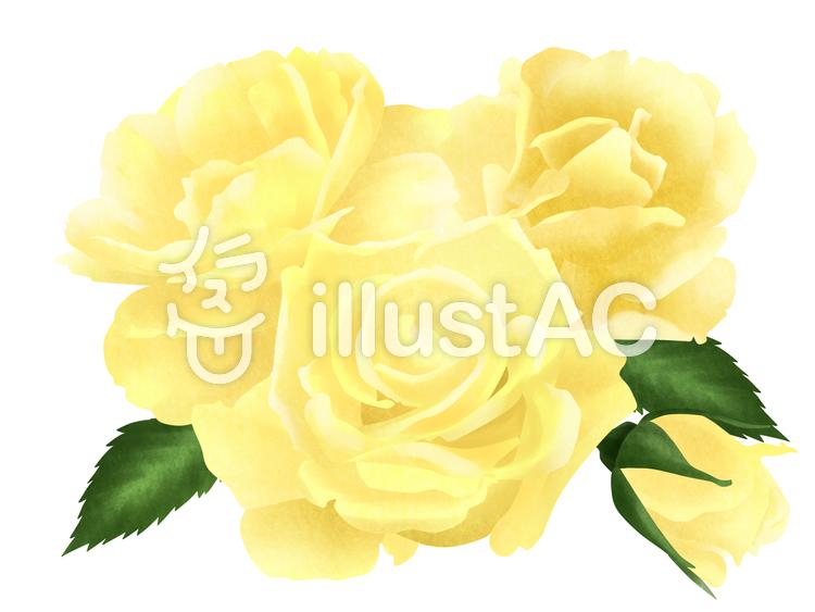 【フリーイラスト素材】父の日に黄色いバラ