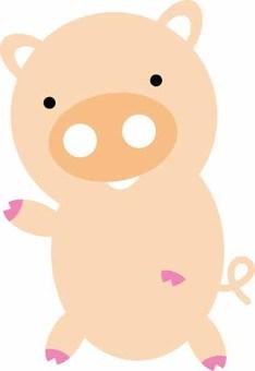 Pig - Standing