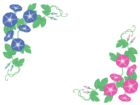 나팔꽃의 프레임