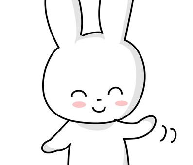 使用的兔子