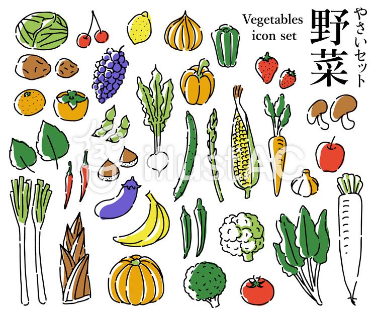 手書き野菜セットのイラスト