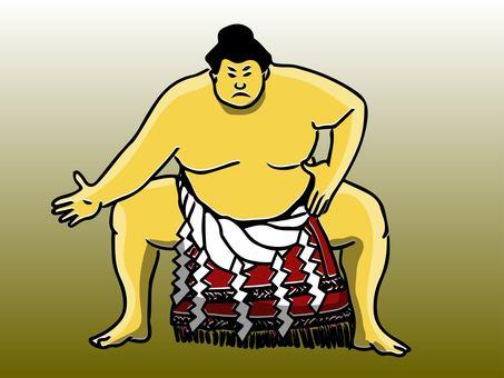 Sumo wrestler yokozuna