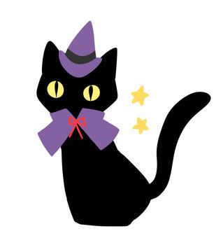 Black Cat (2)