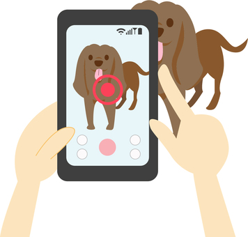 Where a dog is being taken with a smartphone