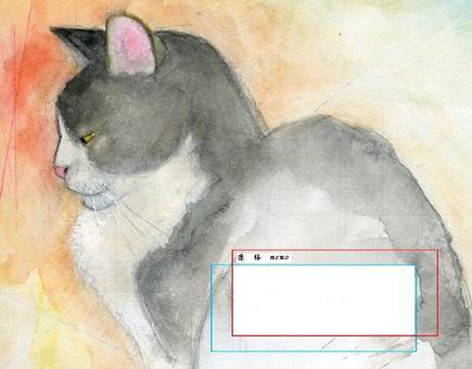 고양이 연락 카 - 드 고양이 2