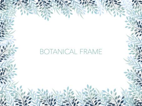 植物的框架