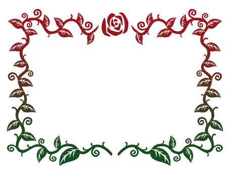 玫瑰幀漸變