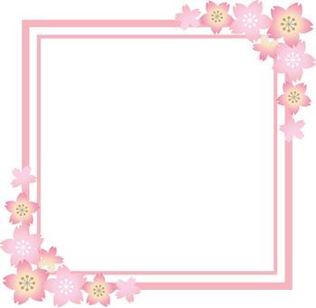 Sakura flower square frame