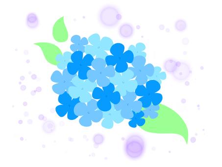 繡球花(藍色)