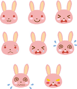 Rabbit summary
