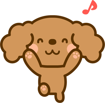 Pleased toy poodle